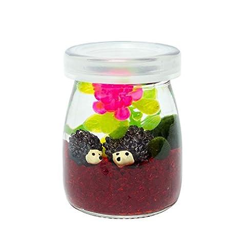 OMEM Moss Balls Aquarium Kit Spherical Algae Pet Glass Tank