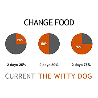 The Witty Dog 100% Organic Wet Dog Food, Complete Menu: Duck With Pumpkin, Tins 6x400 Gr. (Puppy, Adult, Senior Dogs) 6