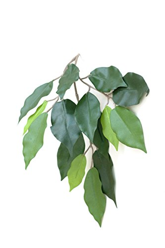 Artificial Silk Fat Ficus Tree - 120cm, Two Tone Green