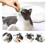 3x Katzenminze Ball | Naturprodukt | Besteht aus 100% natürlicher Katzenminze | Entspannung für Katzen | Katzenspielzeug | Fördert den natürlichen Spieltrieb | Unterstützt die Zahnpflege | 1A Qualität - 6