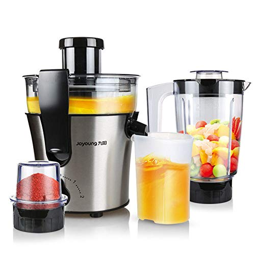 Entsafter, elektrische Fruchtsaftmaschine, Home-Multifunktions-Küchenmaschine,Silber,Einheitsgröße