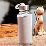 FinukGo 300ml Glastrinkflasche Borosilikatglas Wasserflasche mit Stoffbeutel Tragbares Reisegetränk Flaschengrau