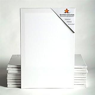 10 ART-STAR LEINWÄNDE AUF KEILRAHMEN 40x60 cm | malfertig, 100% Baumwolle, ideal für Mal-Einsteiger
