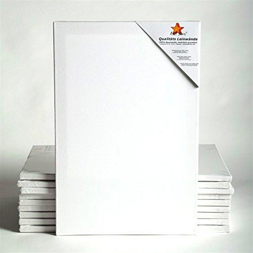 24 Leinwand (10 ART-STAR LEINWÄNDE AUF KEILRAHMEN 24x30 cm | malfertig, 100% Baumwolle, ideal für Mal-Einsteiger)