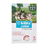 Trumppetz Bayer Kiltix Dog Collar Tick Flea Control Infestation (Large)