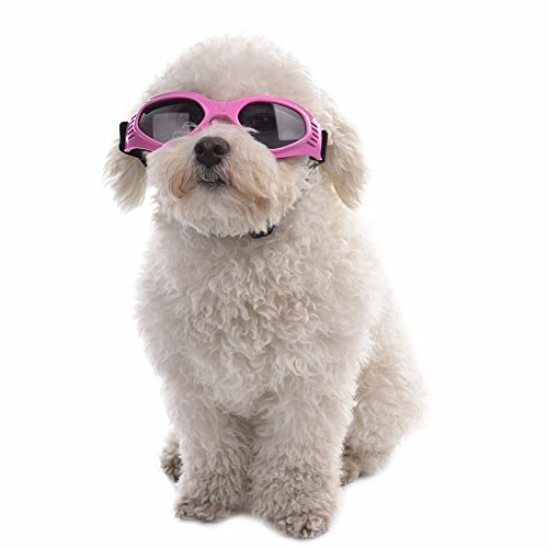Aprigy - Netter Hund Sunglass Sun-Glas-Haustier-Katzen-Schutzbrille Tragen Auge Welpen Augenschutz Pet Grooming Zubeh?r [Rosa ]