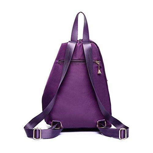 Y&F Lady Taschen LäSsige Anti-Diebstahl-Paket Wasserdichte UmhäNgetasche Schultertaschen Handtasche 43 * 16 * 30 Cm Purple