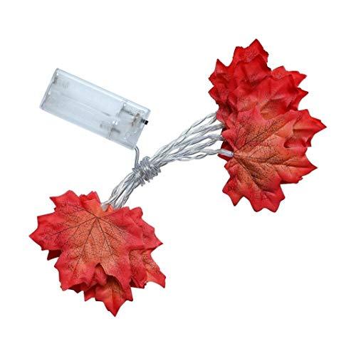Gusspower Guirnarldas Blancas de Luz Cálida LED Luces del Efecto Estrellado Luz de la hoja de arce(Jardines, Casas, Boda, Fiesta de Navidad) (1 m 10 luces)