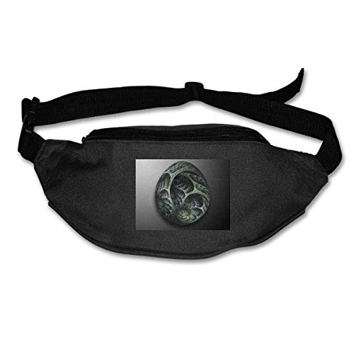 Waist Bag Fanny Pack Dragon Egg Pouch Running Belt Travel Pocket Outdoor Sports (Bag Dragon Egg)