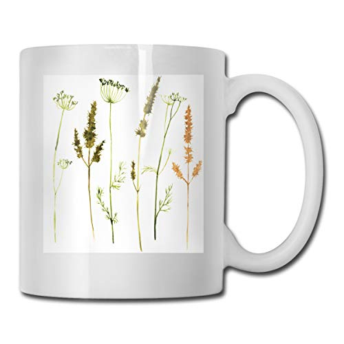 Jolly2T Funny Ceramic Novelty Coffee Mug 11oz,Wild Flowers Herbs and Twigs Wilderness Untamed Plants Ecological Art,Unisex Who Tea Mugs Coffee Cups,Suitable for Office and Home