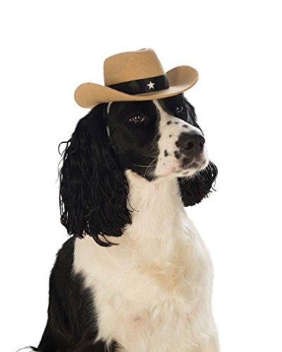 Horror-Shop Cooler Brauner Cowboy-Hut für Hunde zu Fasching & Halloween M/L