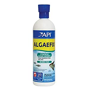 API Algaefix Algae Control (16 oz)