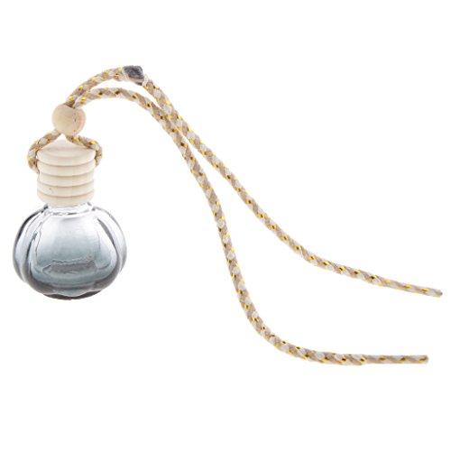 Preisvergleich Produktbild Sharplace Parfüm Diffuser Duft Anhänger Auto Dekoration Lufterfrischer zum Aufhängen - Kugel Form