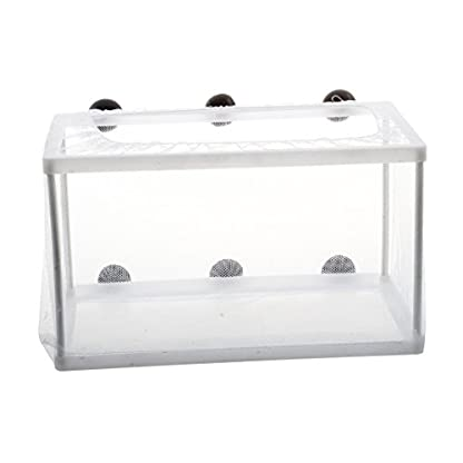 SODIAL(R) Fish Tank Plastic Frame White Net Fry Hatchery Breeder with Suction Cups 1
