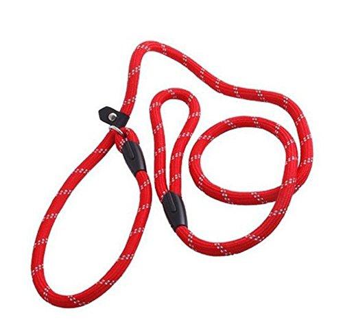 1PCS 1.2m Rot Einstellbare Haustier Hund Nylon Schleife Slip Ausbildung Leine Blei Seil Slip Hund Leine und Kragen (Slip-kragen)