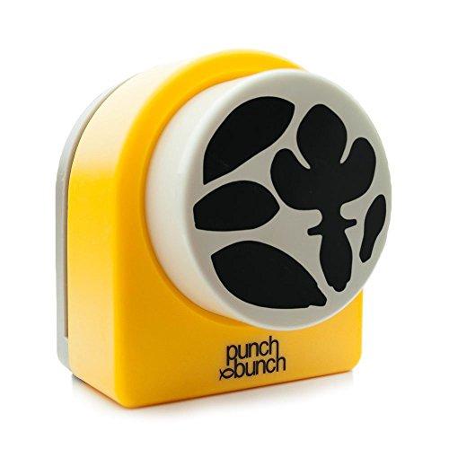 Punch Bunch Super Giant Punch,, Cymbidium Orchidee, (Blütenblätter Stanze)