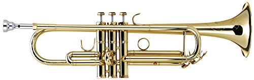 Lech Oro 00035102 TR-16 L Bb trompeta (carcasa de acero inoxidable, boquilla, paño de limpieza, aceite de la válvula) de oro