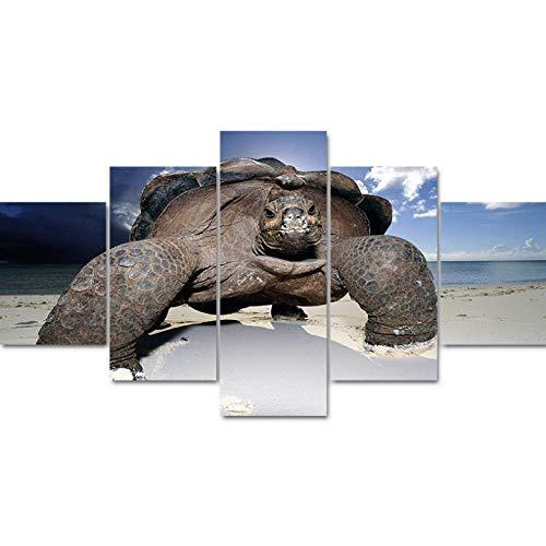 Jgophu Malerei Hause Dekorative Öl Modulare 5 Panel Schildkröte HD Leinwand Bild Rahmen Wand Kunstdrucke Poster Für Wohnzimmer 30x40x2 30x60X2 30x80 cm