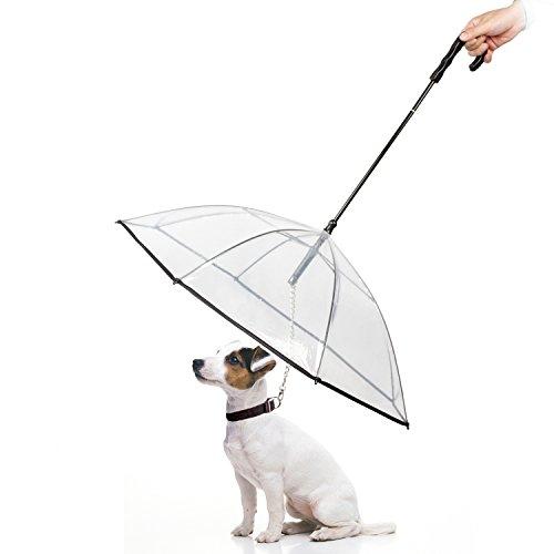 Namsan - Paraguas con Correa para Perros al Aire Libre (Nieve/Lluvia)