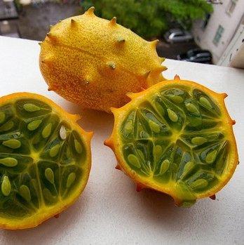 Concombre chaud vente 30 graines de concombre de fruits, Cuke, vert, blanc, rouge, graines de concombre 8