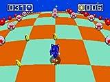 Sonic Mega Collection Plus -