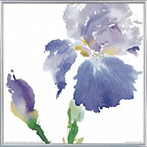 Flowers Poster Art Print and Frame (Plastic) - Iris, Summer Thornton (16 x 16 inches)