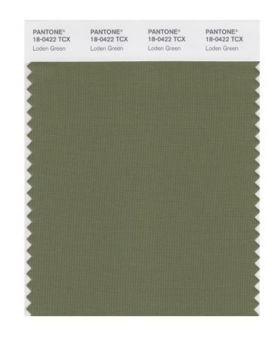 PANTONE SMART 18-0422X Color Swatch Card, Loden Green by Pantone -