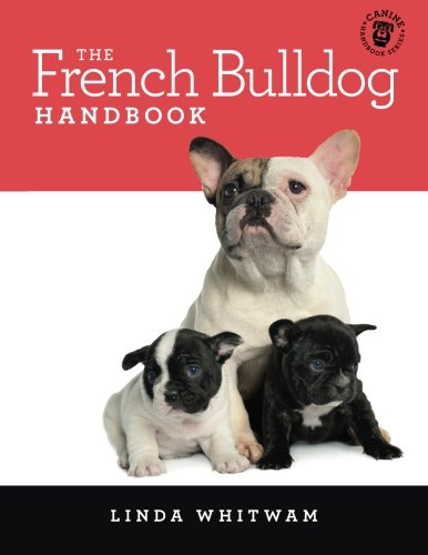 41DAvW5J6lL - NO.1# FRENCH BULLDOG DOG BREED INFORMATION GUIDE