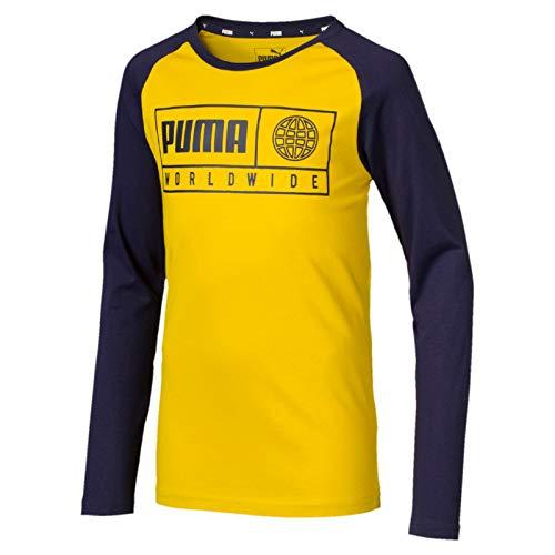 Puma Jungen Alpha Graphic Longsleeve Tee B T-Shirt, Sulphur, 116
