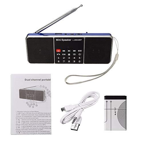 Fannty Mini tragbarer lcd fm radio stereo lautsprecher mp4 musik player micro sd tf usb aux Lcd-stereo