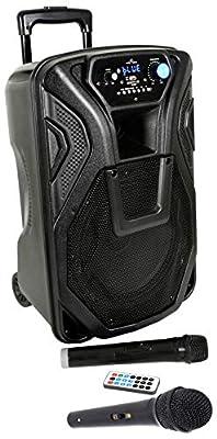 Cassa Acustica Attiva Amplificata Altoparlante Karaoke Trolley Portatile Ricaricabile con Bluetooth, Radio, Echo, Eco, USB, SD, Mmc, Mp3, Wma, Microfoni Wireless, Ingresso Chitarra al miglior prezzo da Polaris Audio Hi Fi