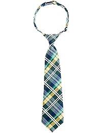 Retreez elegante Tartán De Cuadros Escoceses tejido microfibra PRE-TIED Boy 's Tie