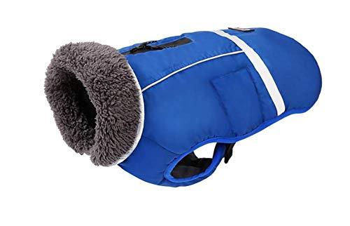 Tossi Reflektierende Wasserdichte Winddichte Hundemantel Kaltes Wetter Warme -