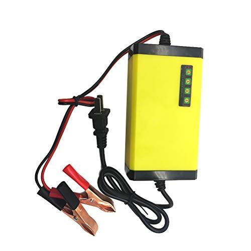 Vosarea Caricabatteria con display di protezione contro il cortocircuito inverso della batteria del motociclo 12V 20AH