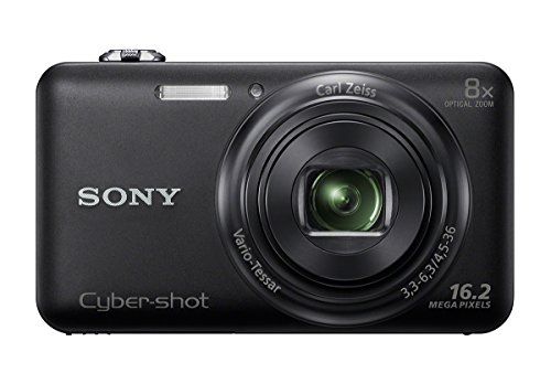 Sony Cyber-shot W Series Digital Camera