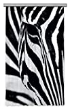 AG Design Zebra Gardine/Vorhang, Stoff, Mehrfarbig, 140 cm x 245 cm