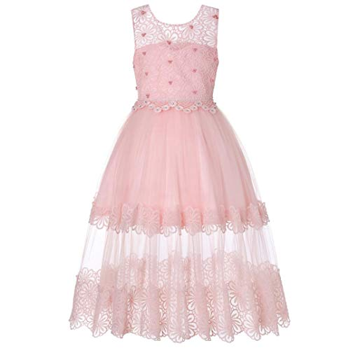 ZYLL Girl Pageant Dresses, Dress Lace Hot Diamond Flower Girl Puff Princess Dress für Fancy Dress Halloween Kostüm-Hochzeit Party,Pink,140CM (Flower Kostüme Dress Fancy)