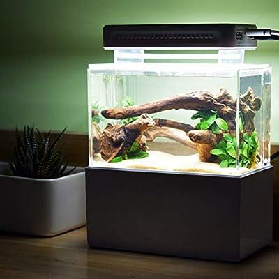 CanKunKeMao light 5V Aquarium Bleu Lampe Réservoir De Poissons LED Éclairage Lampe Réservoir De Poissons Lampe pour Mini Réservoir en Plastique Dédié Corail Bleu