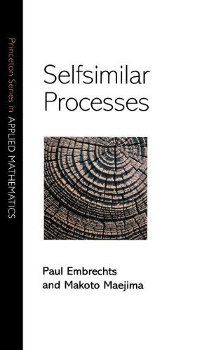 Selfsimilar Processes (Princeton Series in Applied Mathematics) by Paul Embrechts (2002-08-05)