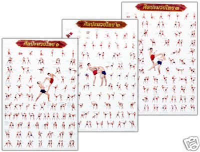 3 Kickbox / Muay Thai - Trainings Poster