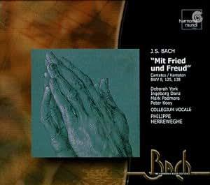 Mit Fried und Freud