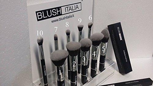 Kabuki blush kit italien brosses 10 + plexi expo