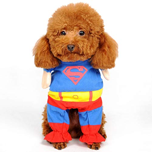 Pet Kostüm Superman - Spider Man Pet Dog Kostüm , Pet Dog Kleidung Welpe Pet Jumpsuit Superman , Mäntel Pets Dress Up Halloween Party Bekleidung Winter warmer Mantel für Hunde Katze (Size : S)