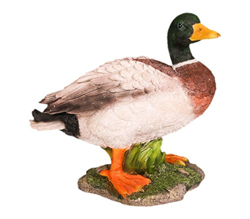 farmwood 3062 Animaux 32 x 29 cm REAL Life Canard – Figurine – Multicolore