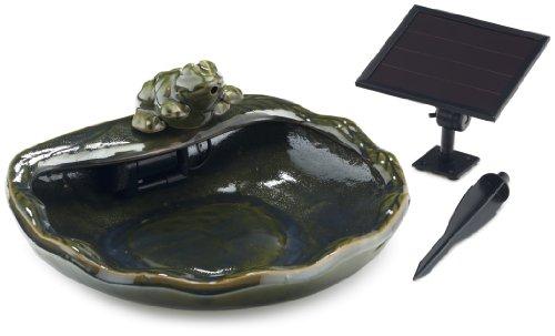 SmartSolar SPT Frosch