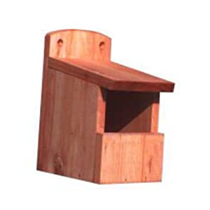Open Front Wild Bird Nest Box