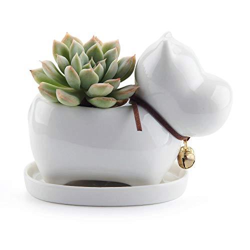 comsaf vaso per pianta grassa vaso di piante bianco ceramica ippopotamo, fioriere di cactus contenitori vasi di fiori decorativo desktop davanzale decorativo desktop davanzale regalo di natale