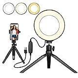 Flashs pour appareils photo