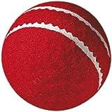 GM First  Cricket Ball   Junior