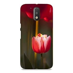 Hamee Designer Printed Hard Back Case Cover for Nokia 6 Design 10000